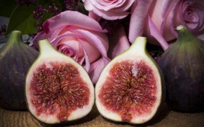 Der Menstruationszyklus verleiht Achtsamkeit, Kraft und innere Einkehr