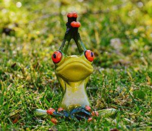 frosch-yoga-wellbeing-koerper-geist