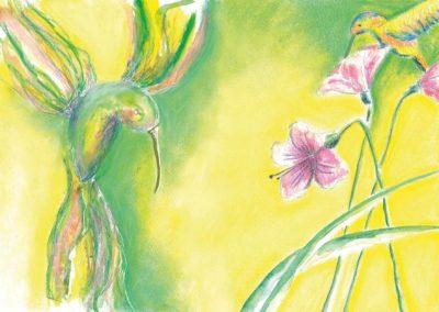 kaethes-wundersame-reise-kollibri