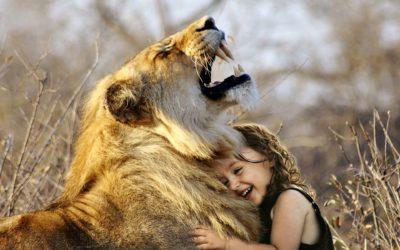 Tierkommunikation von Herz zu Herz